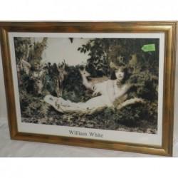Quadro William White